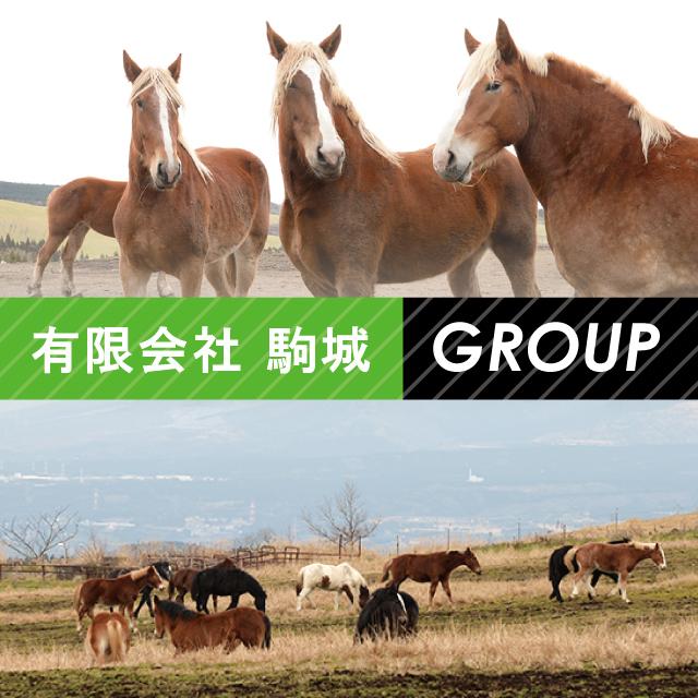 駒城 馬の飼育及び堆肥販売