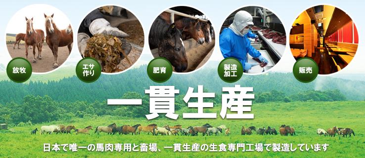 日本で唯一の馬肉専門工場 生産からと畜まで一貫生産の千興ファーム